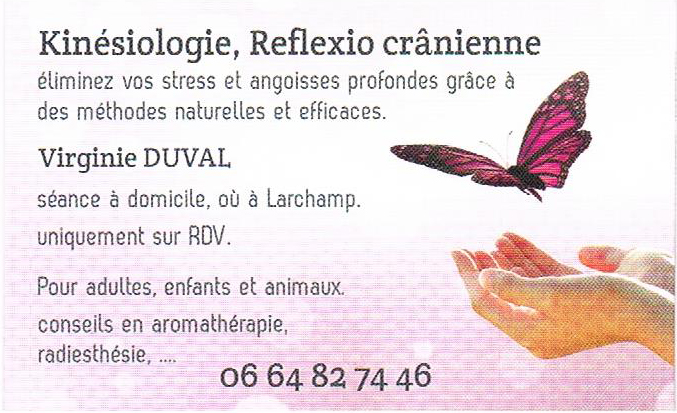 Kinsiologue Touch For Health Rflexologie Crnienne